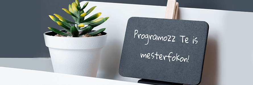Hogyan lett a Java programozási nyelv a legnépszerûbb a világon?